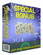 Spinner Bros Bonus